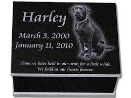 pet cremation nj the pet cremation conspiracy theory and the hardest lesson i