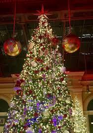 the most wonderful time of the year zsazsa bellagio u2013 like no