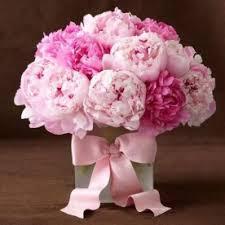 peonies flower delivery peonies flower delivery in fort worth send peonies flowers in