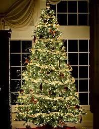 Professional Christmas Tree Decorators Nyc Christmas Trees Soho Trees Xmas Tree Delivery In New York City
