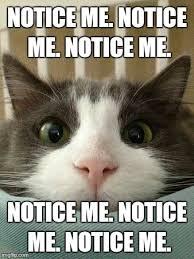 Hello Kitty Meme - hello kitty cat memes imgflip