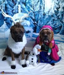 Weiner Dog Halloween Costumes Frozen Costume Dog Halloween Halloween Costumes Costumes