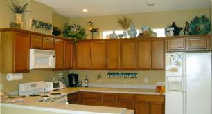 amusing impression kitchen cabinet kings rta dazzling ikea kitchen