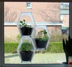 51 best indoor gardening images on pinterest indoor gardening