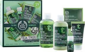 tea tree blemish kit ulta