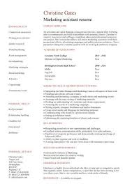 sample of marketing resume austsecure com
