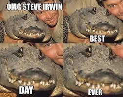 Funny Australia Day Memes - best 25 aussie memes ideas on pinterest australia funny