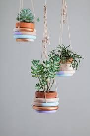 best 25 indoor plant hangers ideas on pinterest plant hanger