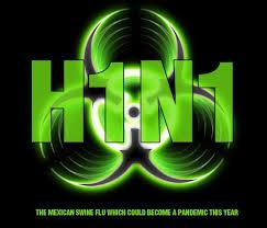 Novi (svinjski) grip H1N1