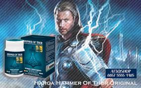 harga hammer of thor original di indonesia eugenecity bakery