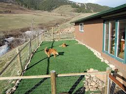 backyard ideas for dogs green lawn peeples valley arizona indoor dog park small backyard ideas