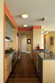 Modern American Kitchen Design 41 Best Ecological Images On Pinterest Kitchen Kitchen Ideas