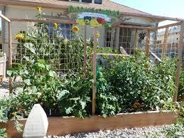 urban vegetable garden design ideas with yellow flowers plantation