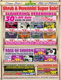 current ads thetreefarm com
