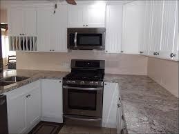 Purchase Kitchen Cabinets Online Kitchen Buy Kitchen Cabinet Doors New Cabinet Doors How To Paint