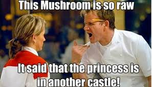 Gordon Ramsey Meme - the best chef ramsay memes that capture his endless talent for insults