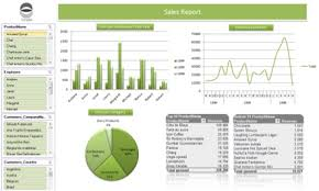 Excel Dashboard Templates Executive Dashboards For Monitoring Performance Apesoft