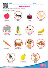 english identify nouns worksheets for kids
