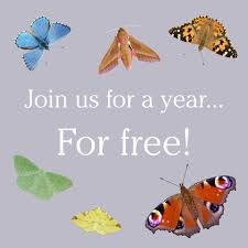 join butterfly conservation for free butterfly