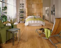 Living Room With Laminate Flooring Flooring Trends Light Colors
