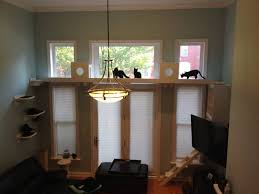 Wall Shelves For Cats The Vertical Cat Pictures Cat Ify Your Home For The Tree Dweller