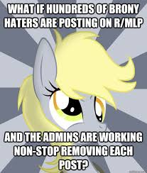 Mlp Funny Meme - what if hundreds of brony haters are posting on r mlp and the