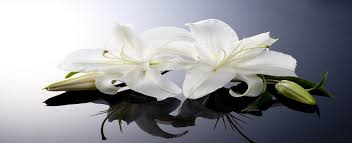 memorial flowers bespoke funeral flowers for your loved one in gloucester