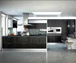 small kitchen design ideas 2012 cabinet best wolf modern kitchen design ideas 2012 new cabinet