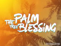 service background for church services the palm tree blessing
