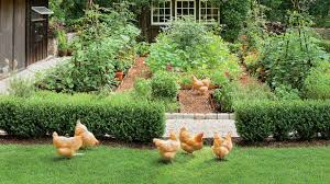 Backyard Chicken Magazine by Dream Garden It Even Has A Chicken Coop Southern Living