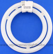 circular fluorescent light bulbs fc55 2c 835 55w 3500k double circular fluorescent l light bulb
