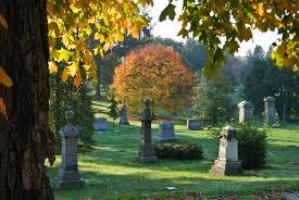 fall colors spring grove cemetery arboretum cincinnati ohio