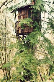 images about tree house on pinterest treehouse houses and forts