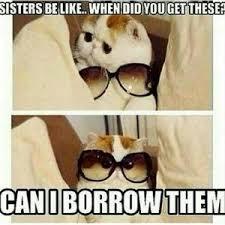 Funny Sibling Memes - funny sister memes sister best of the funny meme
