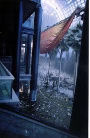 disaster images of ground zero