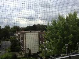 katzennetze balkon katzennetz anbringen www katzennetze nrw de katzennetz balkon