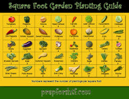 amazing of square foot vegetable gardening how to make an urban