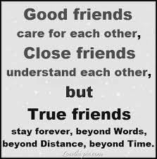 88 best friendship quotes images on quote