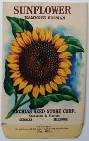 sunflower seed packets vintage tucker med flower seed packet lithograph sweet pea 0
