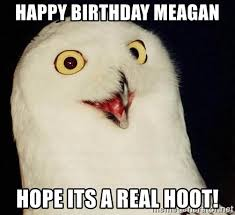 Happy Birthday Owl Meme - happy birthday meagan hope its a real hoot o rly owl meme