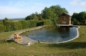 natural swimming pool design astounding builders in kent pools 1