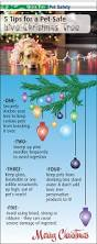5 tips for a pet safe live christmas tree aging tree