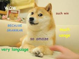 Dog Doctor Meme - because is the 2013 word of the year because woo such win doge