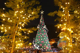 best christmas lights in the world the most beautiful and spectacular christmas trees in the world
