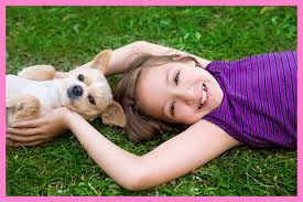 Creature Comforts Mobile Vet About Creature Comfort Veterinary House Call Services Pllc