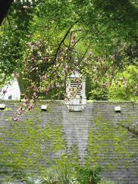 leach botanical garden springs into bloom portland oregon Leach Botanical Garden