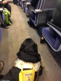 Hit The Floor Meaning - blind man forced to sit on the floor of a virgin train daily