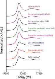 Np Full Form Microbially Mediated Reduction Of Np V By A Consortium Of