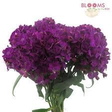 wedding flowers purple purple flowers diy purple wedding flowers bloomsbythebox