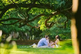 Botanic Gardens Brisbane City Brisbane Wedding Photographer Osetroff Engagements And